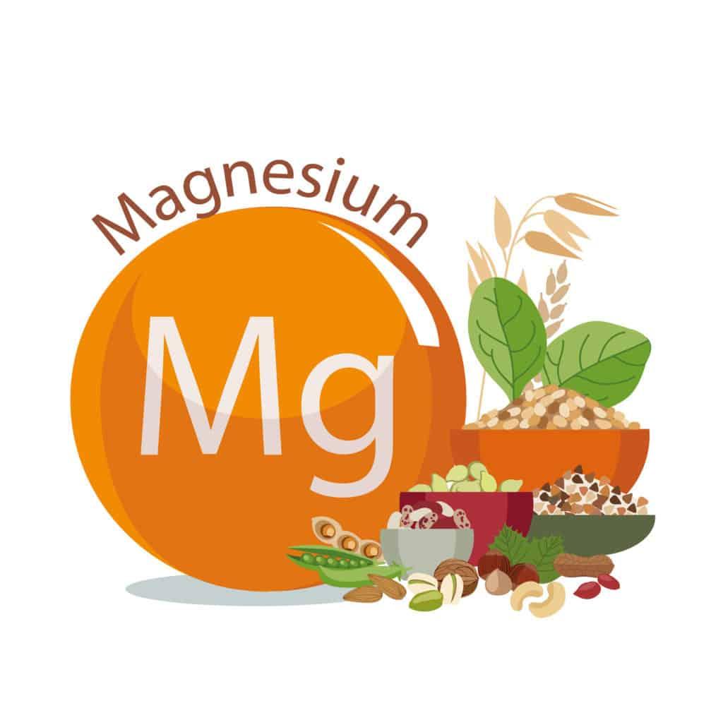 Magnesium pflanzliche Quelle Gehalt